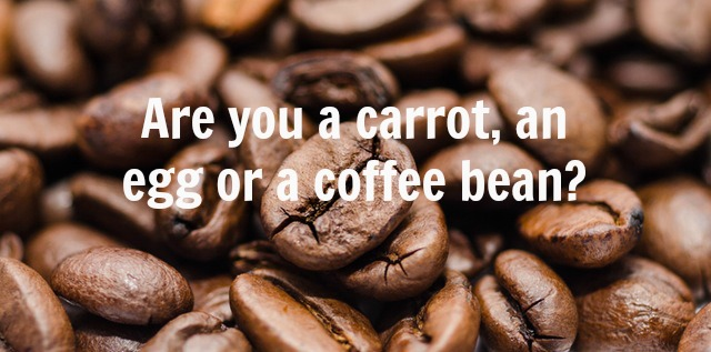 Are you a carrot, an egg or a coffee bean?