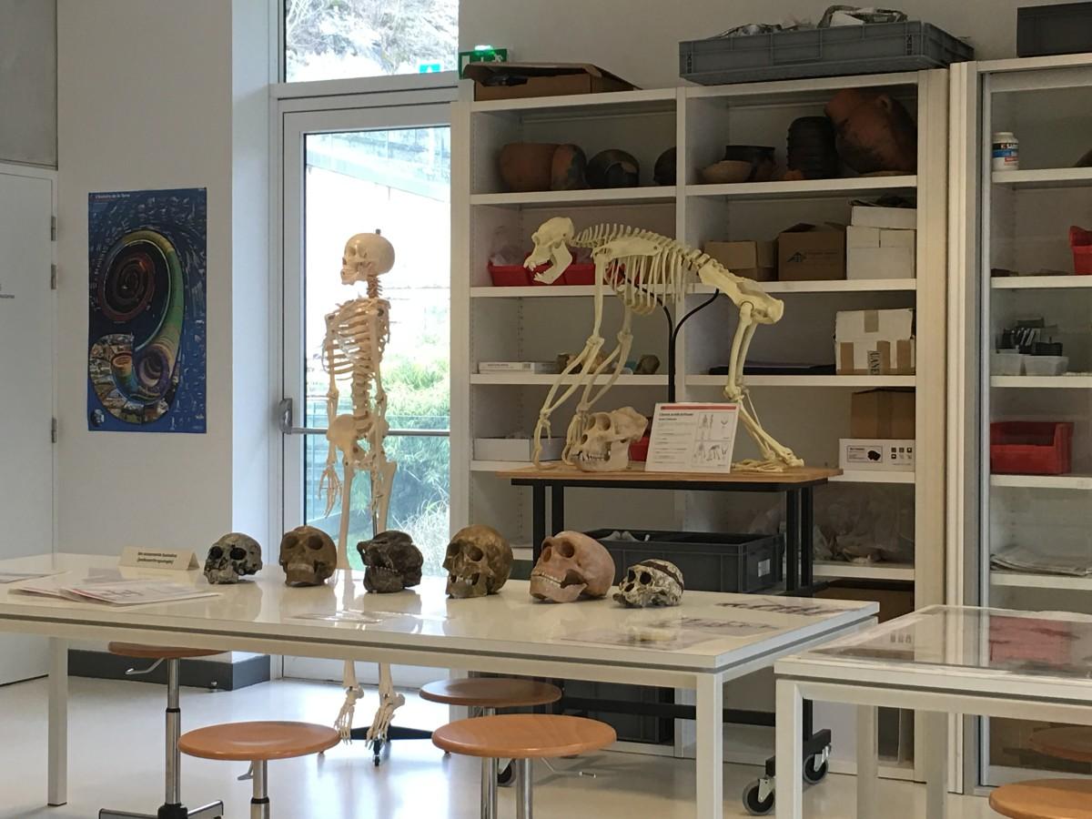 Prehistory Kids Dordogne PIP prehistolab